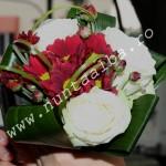 buchet_trandafiri_albi_si_crizantema